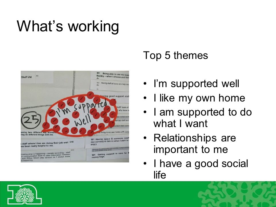 Whats working Top 5 themes Im supported well I like my own home I am supported to do what I want Relationships are important to me I have a good social life