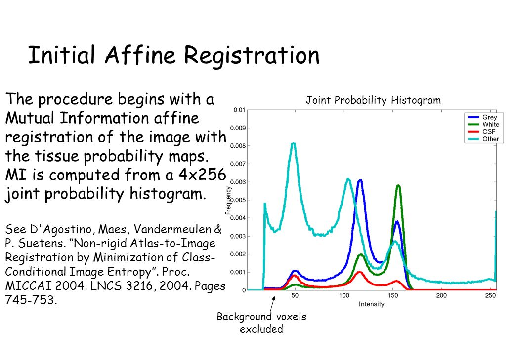 Initial Affine Registration The procedure begins with a Mutual Information affine registration of the image with the tissue probability maps.