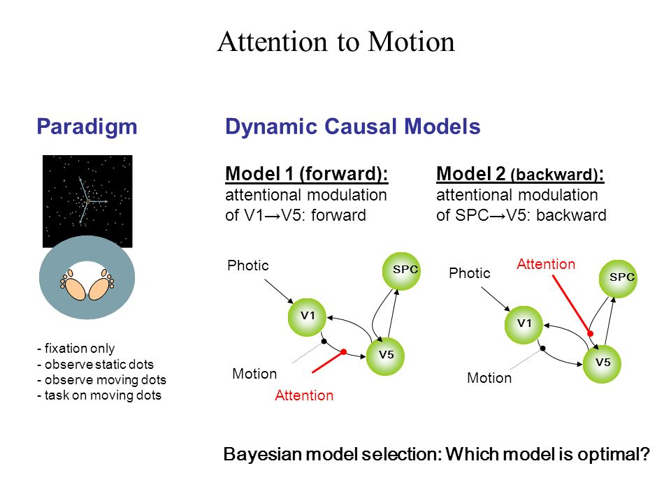 Paradigm - fixation only - observe static dots - observe moving dots - task on moving dots Dynamic Causal Models Attention to Motion V1 V5 SPC Motion Photic Attention V1 V5 SPC Motion Photic Attention Model 1 (forward): attentional modulation of V1V5: forward Model 2 (backward) : attentional modulation of SPCV5: backward Bayesian model selection: Which model is optimal