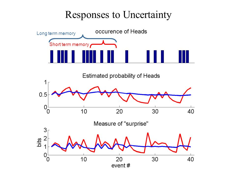 Responses to Uncertainty Long term memory Short term memory