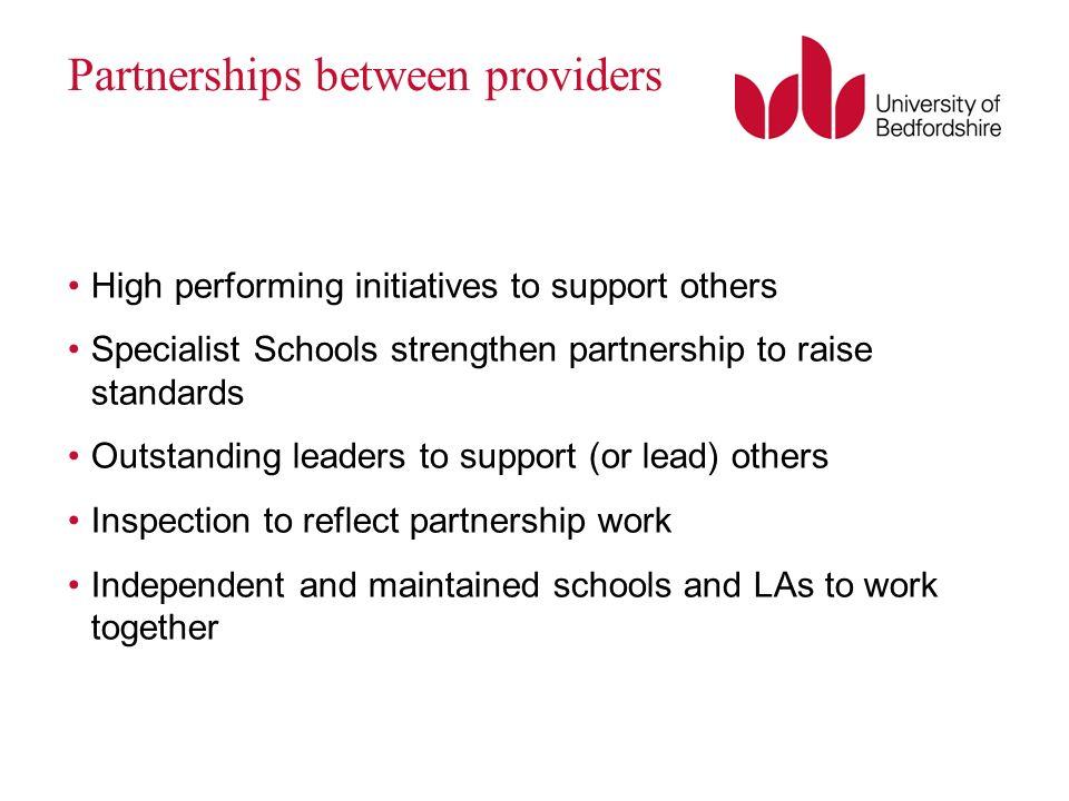 Partnerships between providers High performing initiatives to support others Specialist Schools strengthen partnership to raise standards Outstanding leaders to support (or lead) others Inspection to reflect partnership work Independent and maintained schools and LAs to work together