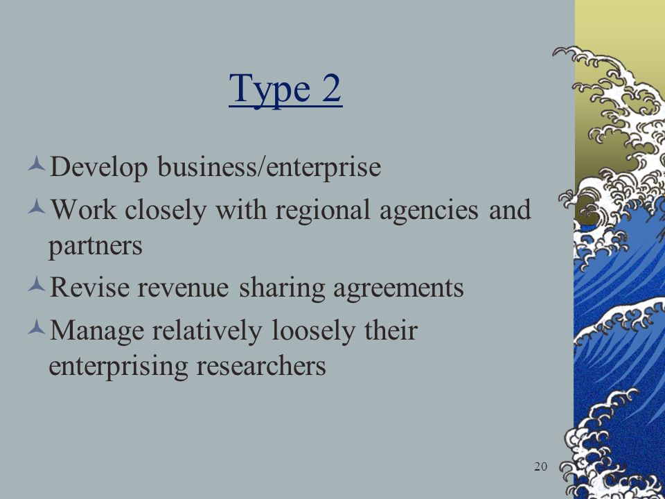20 Type 2 Develop business/enterprise Work closely with regional agencies and partners Revise revenue sharing agreements Manage relatively loosely their enterprising researchers