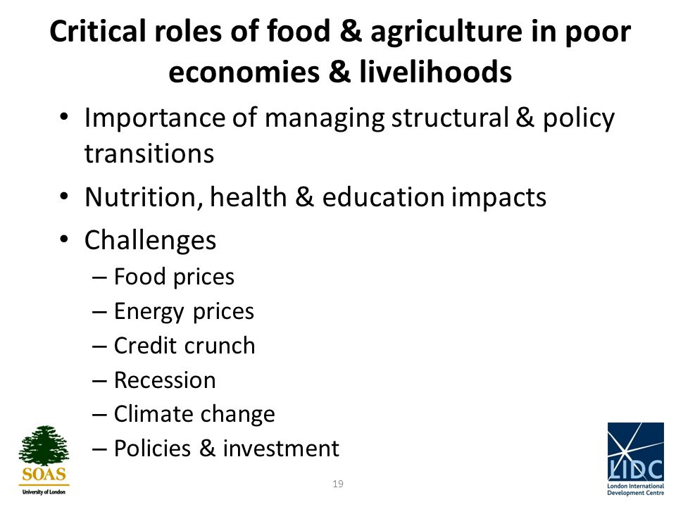 Importance of managing structural & policy transitions Nutrition, health & education impacts Challenges – Food prices – Energy prices – Credit crunch – Recession – Climate change – Policies & investment 19 Critical roles of food & agriculture in poor economies & livelihoods