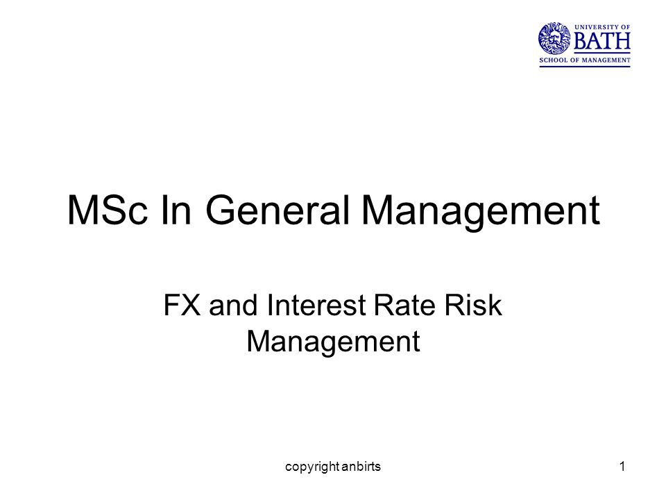 copyright anbirts1 MSc In General Management FX and Interest Rate Risk Management