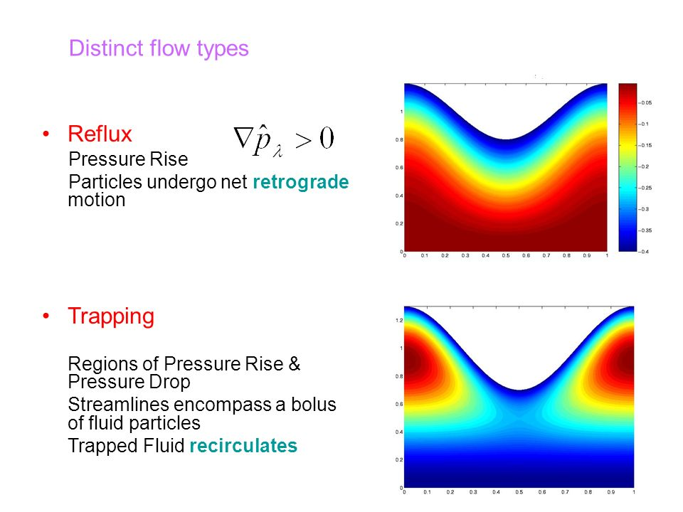 Reflux Pressure Rise Particles undergo net retrograde motion Trapping Regions of Pressure Rise & Pressure Drop Streamlines encompass a bolus of fluid particles Trapped Fluid recirculates Distinct flow types