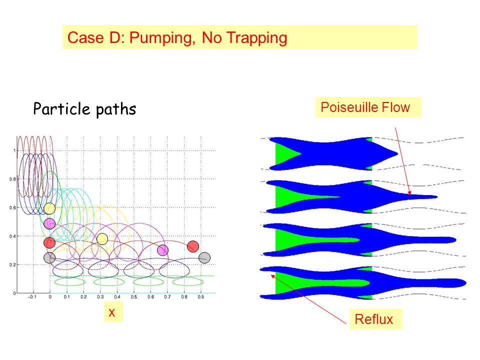 x Case D: Pumping, No Trapping Poiseuille Flow Reflux Particle paths