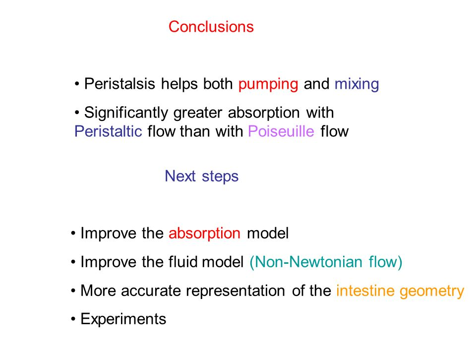 Conclusions Peristalsis helps both pumping and mixing Significantly greater absorption with Peristaltic flow than with Poiseuille flow Next steps Improve the absorption model Improve the fluid model (Non-Newtonian flow) More accurate representation of the intestine geometry Experiments