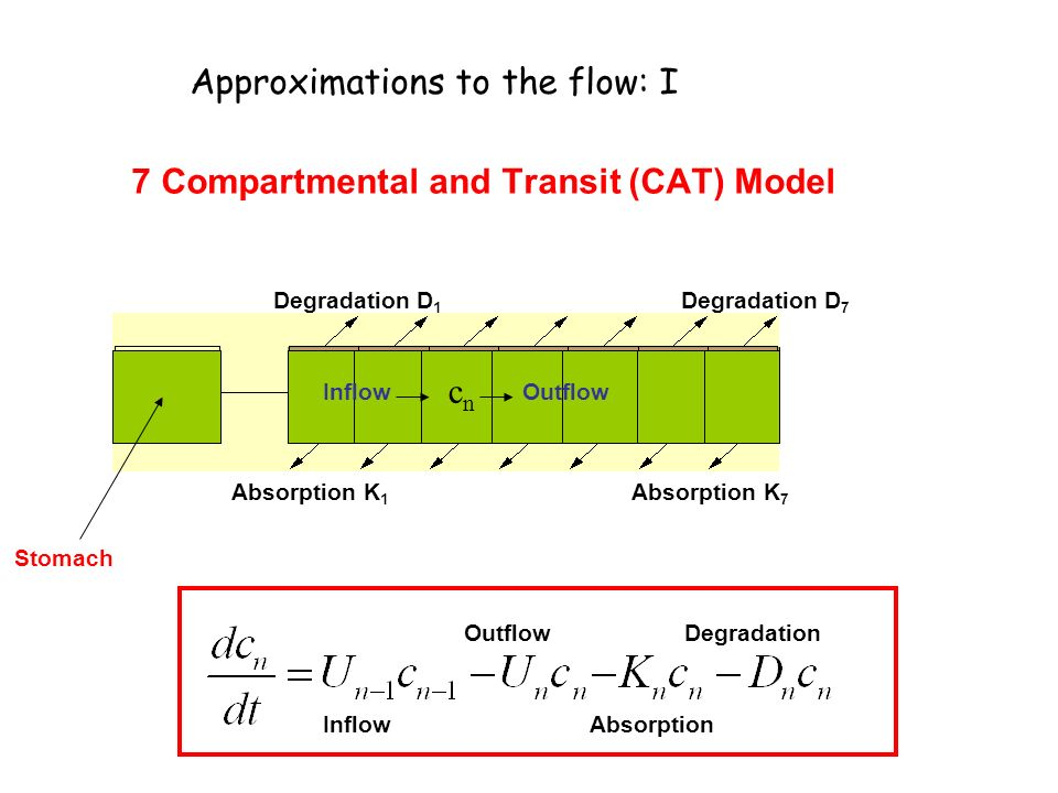 Approximations to the flow: I 7 Compartmental and Transit (CAT) Model INTESTINE Stomach Absorption K 1 Absorption K 7 Degradation D 1 Degradation D 7 cncn Inflow Outflow Absorption Degradation
