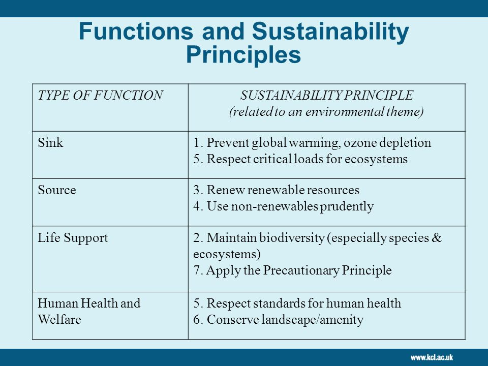 Functions and Sustainability Principles TYPE OF FUNCTIONSUSTAINABILITY PRINCIPLE (related to an environmental theme) Sink1.