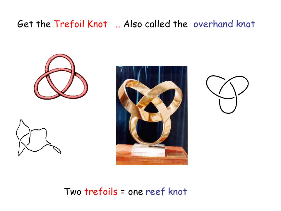 Get the Trefoil Knot.. Also called the overhand knot Two trefoils = one reef knot