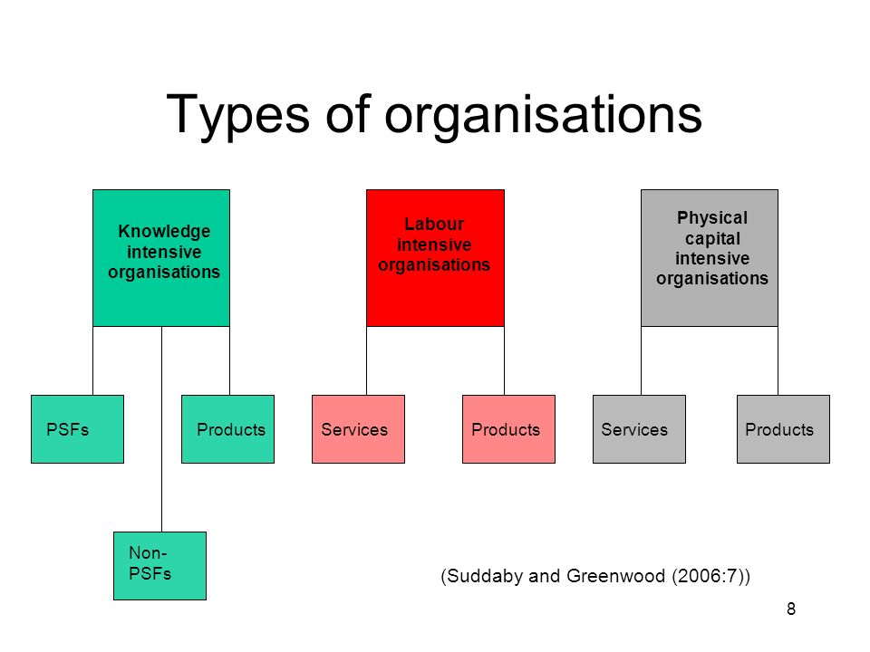 8 Types of organisations Knowledge intensive organisations Labour intensive organisations Physical capital intensive organisations PSFs Non- PSFs ProductsServicesProductsServicesProducts (Suddaby and Greenwood (2006:7))