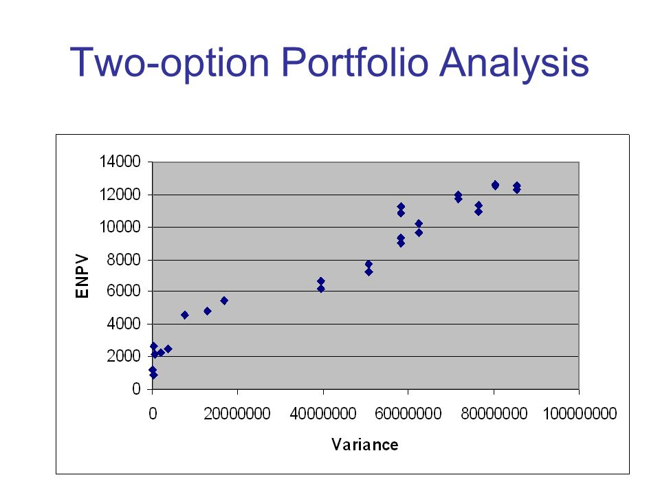 Two-option Portfolio Analysis