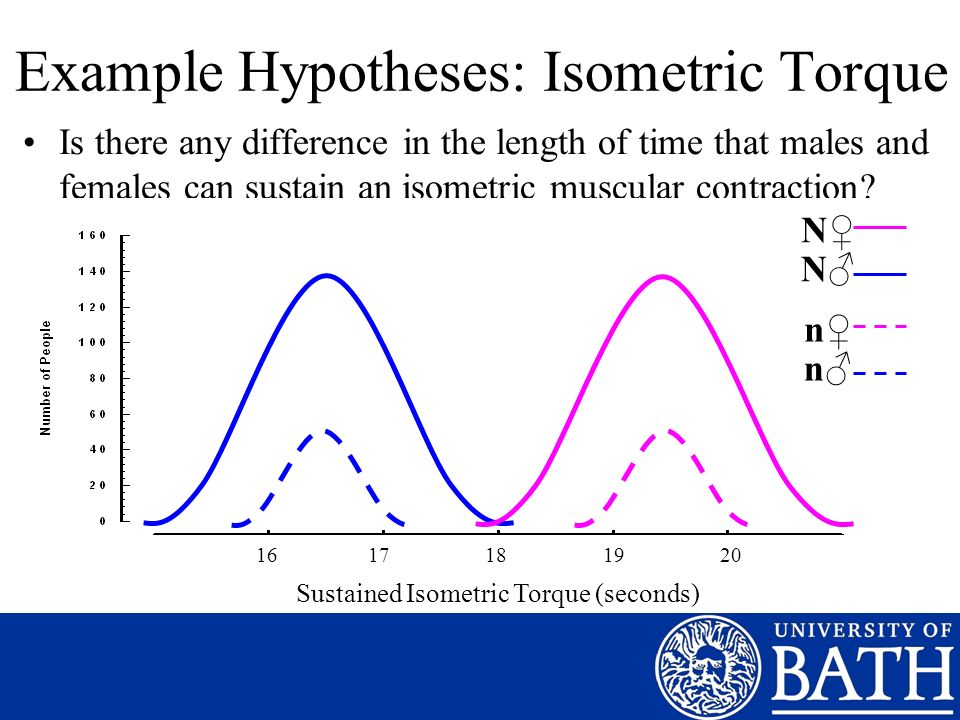 Example Hypotheses: Isometric Torque Is there any difference in the length of time that males and females can sustain an isometric muscular contraction.
