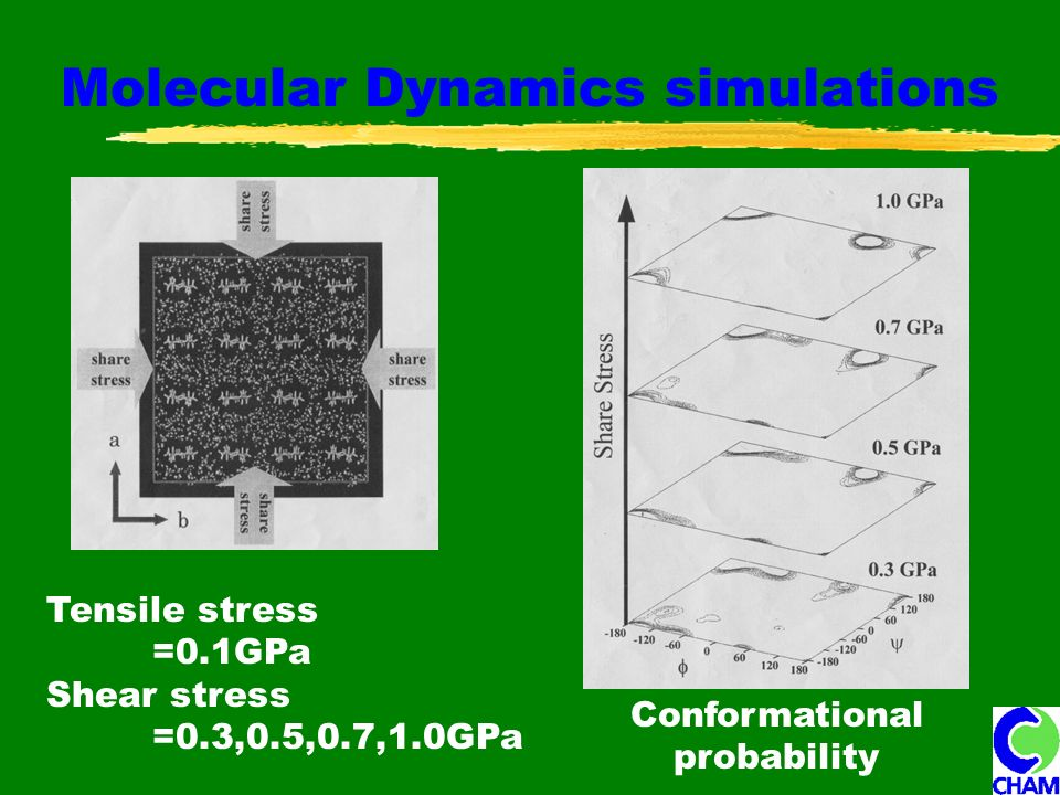 Molecular Dynamics simulations Tensile stress =0.1GPa Shear stress =0.3,0.5,0.7,1.0GPa Conformational probability