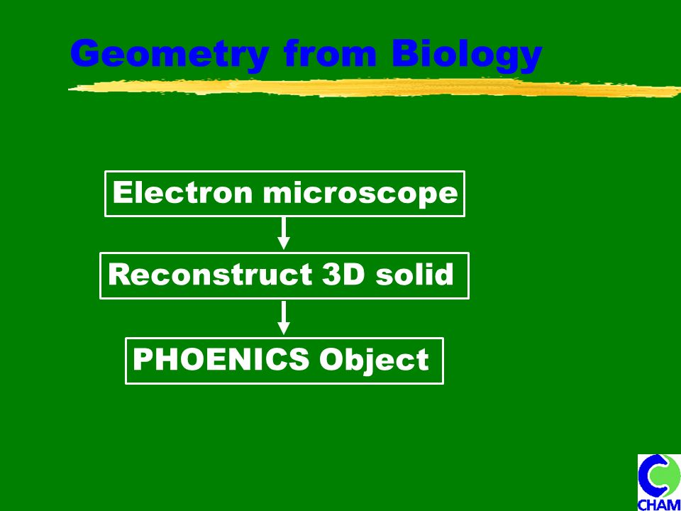 Geometry from Biology Electron microscope Reconstruct 3D solid PHOENICS Object