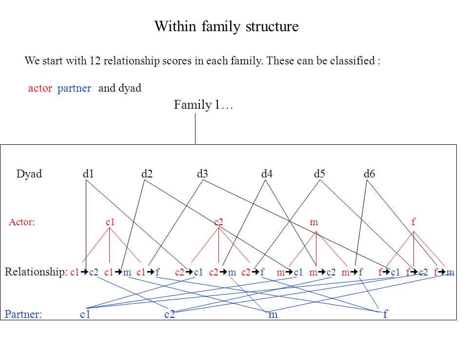 Within family structure Family 1… Relationship: c1 c2 c1 m c1 f c2 c1 c2 m c2 f m c1 m c2 m f f c1 f c2 f m Actor: c1 c2 m f Partner: c1 c2 m f Dyad d1 d2 d3 d4 d5 d6 We start with 12 relationship scores in each family.