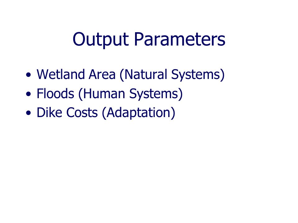 Output Parameters Wetland Area (Natural Systems) Floods (Human Systems) Dike Costs (Adaptation)