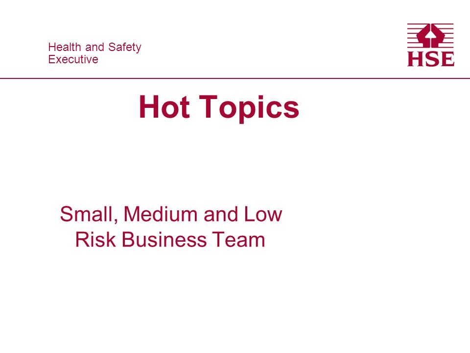 Health and Safety Executive Health and Safety Executive Hot Topics Small, Medium and Low Risk Business Team