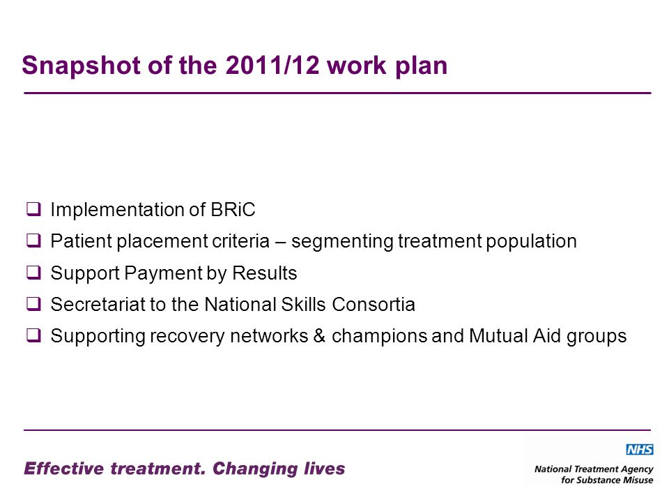 Snapshot of the 2011/12 work plan Implementation of BRiC Patient placement criteria – segmenting treatment population Support Payment by Results Secretariat to the National Skills Consortia Supporting recovery networks & champions and Mutual Aid groups