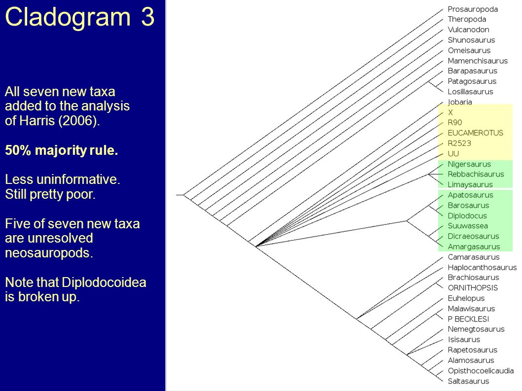 Cladogram 3 All seven new taxa added to the analysis of Harris (2006).
