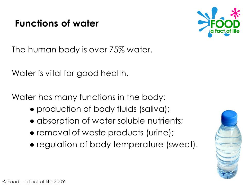 © Food – a fact of life 2009 Functions of water The human body is over 75% water.