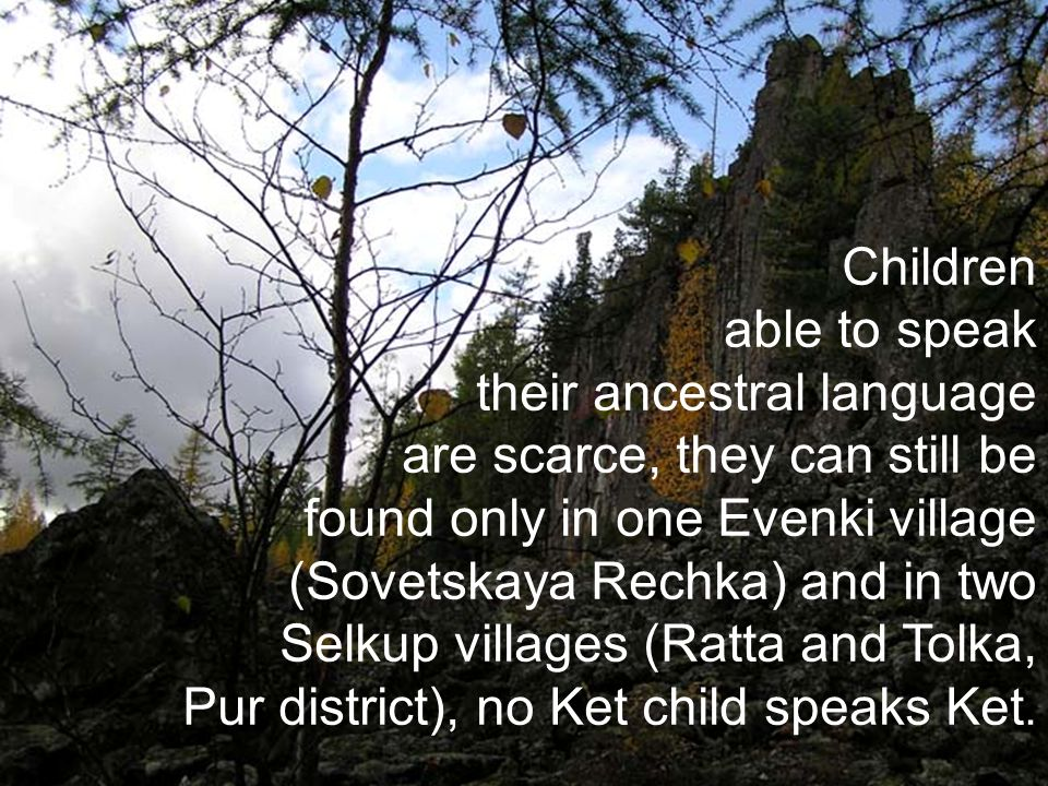 Children able to speak their ancestral language are scarce, they can still be found only in one Evenki village (Sovetskaya Rechka) and in two Selkup villages (Ratta and Tolka, Pur district), no Ket child speaks Ket.