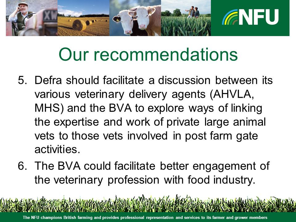 The NFU champions British farming and provides professional representation and services to its farmer and grower members Our recommendations 5.Defra should facilitate a discussion between its various veterinary delivery agents (AHVLA, MHS) and the BVA to explore ways of linking the expertise and work of private large animal vets to those vets involved in post farm gate activities.
