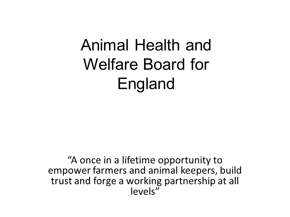 A once in a lifetime opportunity to empower farmers and animal keepers, build trust and forge a working partnership at all levels Animal Health and Welfare Board for England