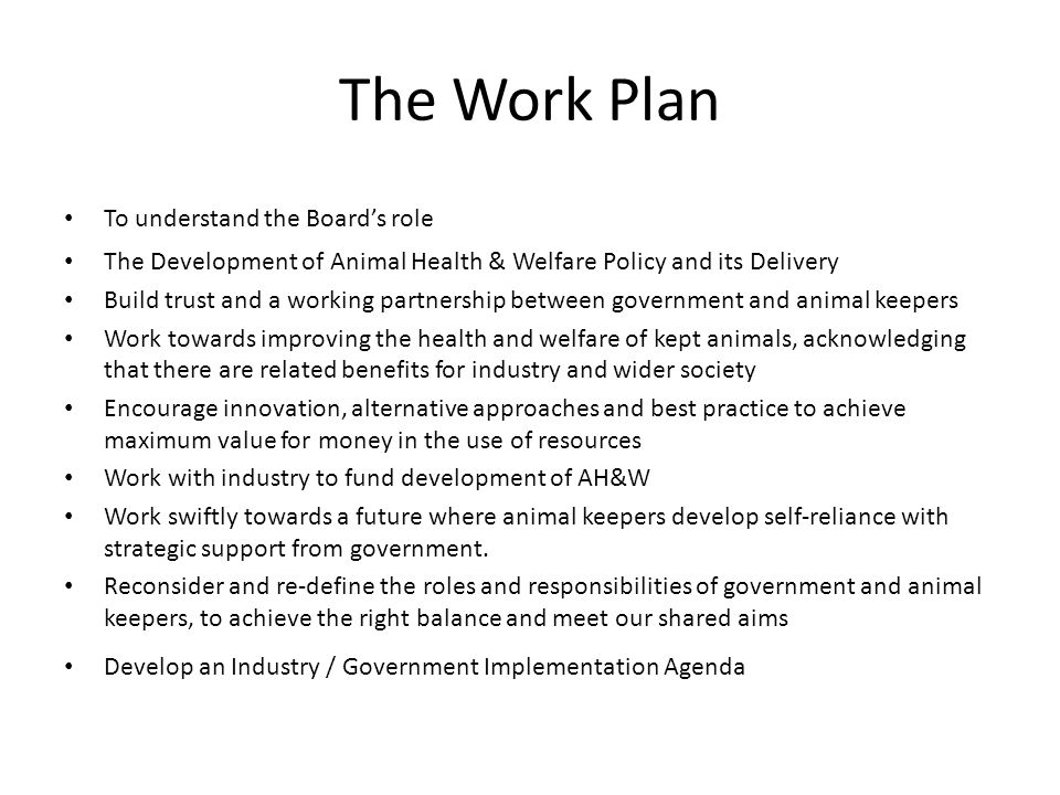 The Work Plan To understand the Boards role The Development of Animal Health & Welfare Policy and its Delivery Build trust and a working partnership between government and animal keepers Work towards improving the health and welfare of kept animals, acknowledging that there are related benefits for industry and wider society Encourage innovation, alternative approaches and best practice to achieve maximum value for money in the use of resources Work with industry to fund development of AH&W Work swiftly towards a future where animal keepers develop self-reliance with strategic support from government.