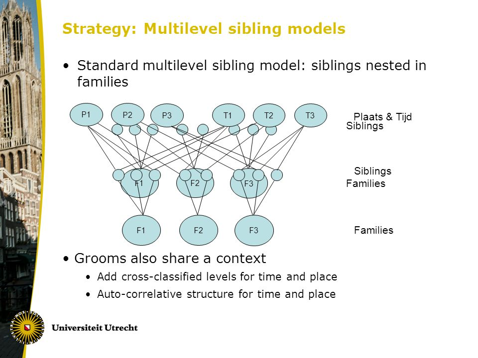 Strategy: Multilevel sibling models Standard multilevel sibling model: siblings nested in families Grooms also share a context Add cross-classified levels for time and place Auto-correlative structure for time and place Families F1 F2 F3 Siblings Families F1 F2 F3 P1 P2 T2T3P3 T1 Plaats & Tijd Siblings