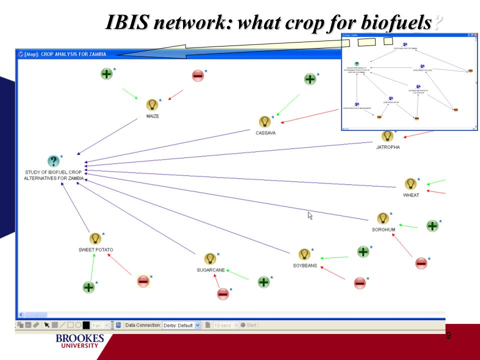 9 IBIS network: what crop for biofuels