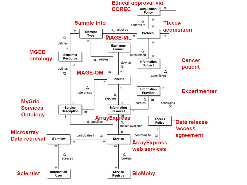 Scientist Microarray Data retrieval ArrayExpress web services ArrayExpress MAGE-OM MAGE-ML Cancer patient BioMoby Tissue acquisition Ethical approval via COREC MyGrid Services Ontology MGED ontology Sample Info Experimenter Data release /access agreement