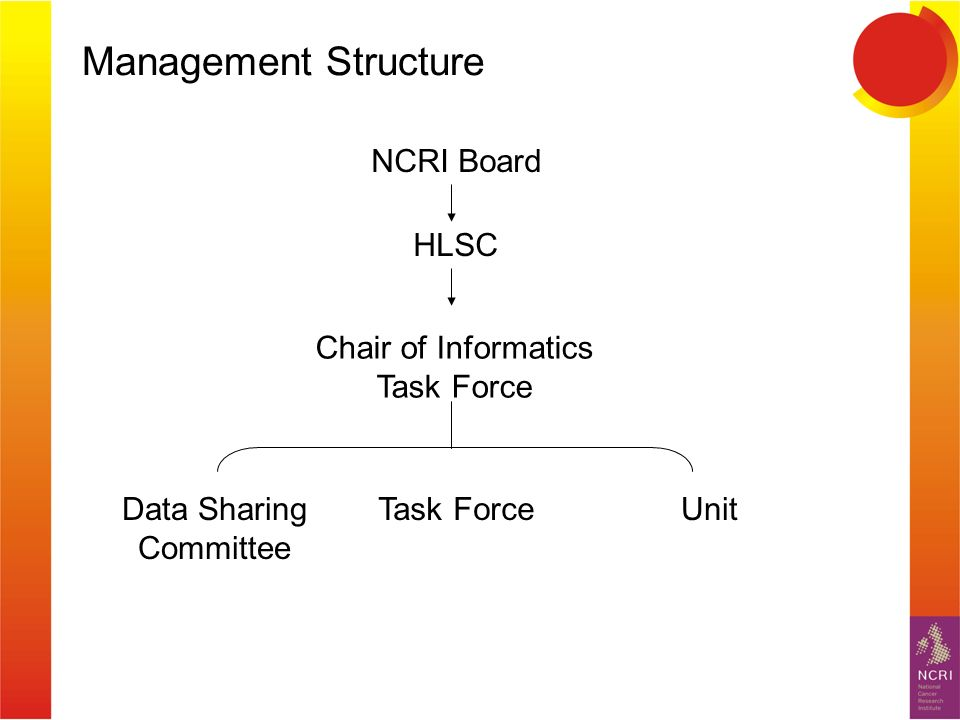 Management Structure NCRI Board HLSC Task ForceUnit Chair of Informatics Task Force Data Sharing Committee