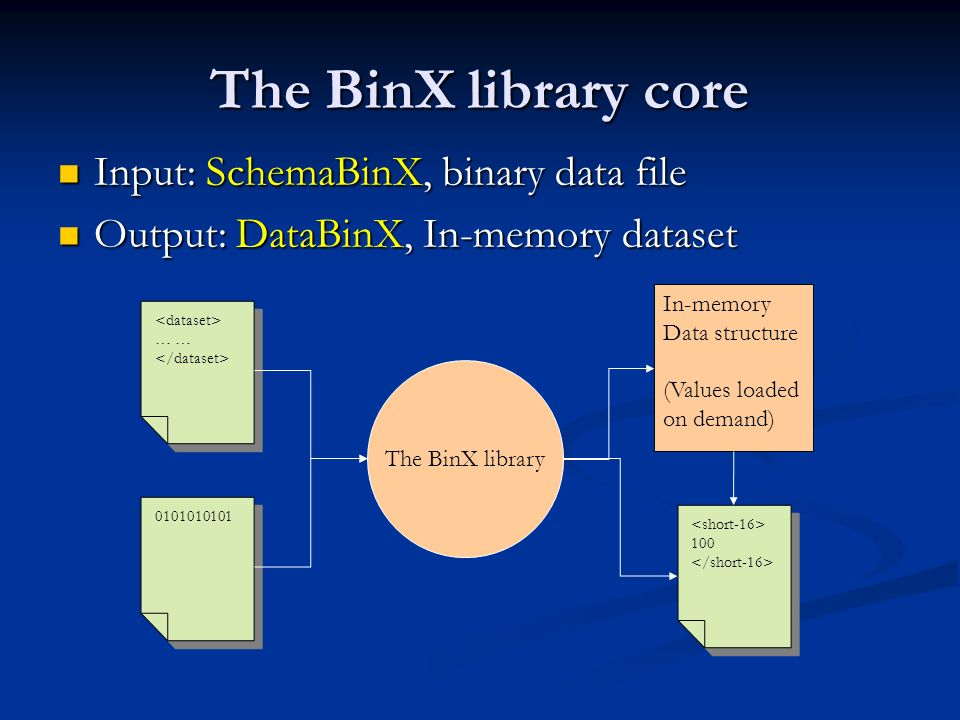 The BinX library core Input: SchemaBinX, binary data file Input: SchemaBinX, binary data file Output: DataBinX, In-memory dataset Output: DataBinX, In-memory dataset … … 0101010101 The BinX library In-memory Data structure (Values loaded on demand) 100 100