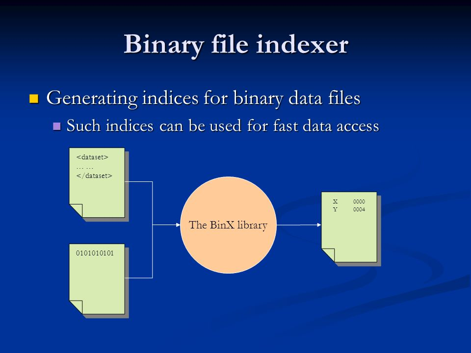Binary file indexer Generating indices for binary data files Generating indices for binary data files Such indices can be used for fast data access Such indices can be used for fast data access … … 0101010101 The BinX library XYXY 0000 0004