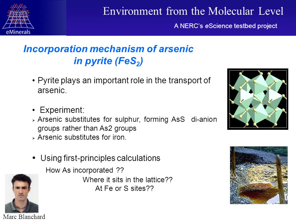 Pyrite plays an important role in the transport of arsenic.