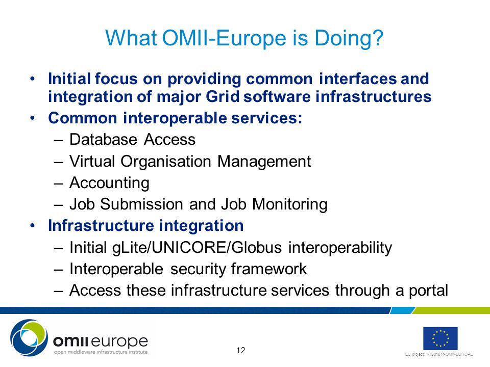 EU project: RIO31844-OMII-EUROPE 12 What OMII-Europe is Doing.