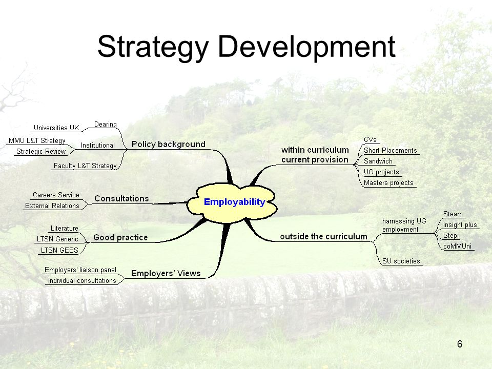 6 Strategy Development