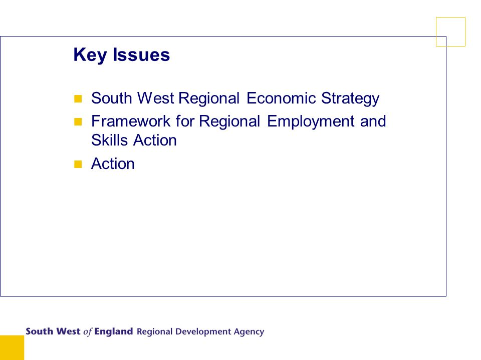 Key Issues n South West Regional Economic Strategy n Framework for Regional Employment and Skills Action n Action