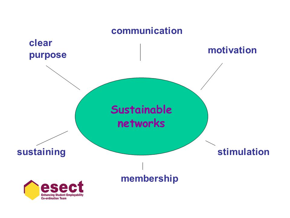 Sustainable networks clear purpose communication motivation stimulation membership sustaining