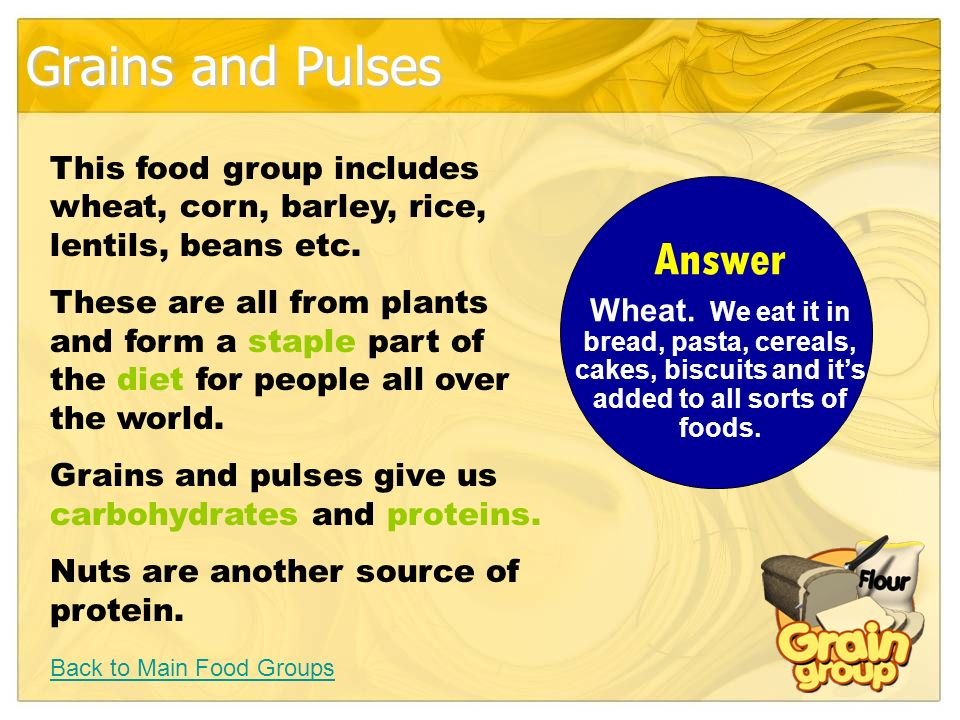 Grains and Pulses Back to Main Food Groups This food group includes wheat, corn, barley, rice, lentils, beans etc.