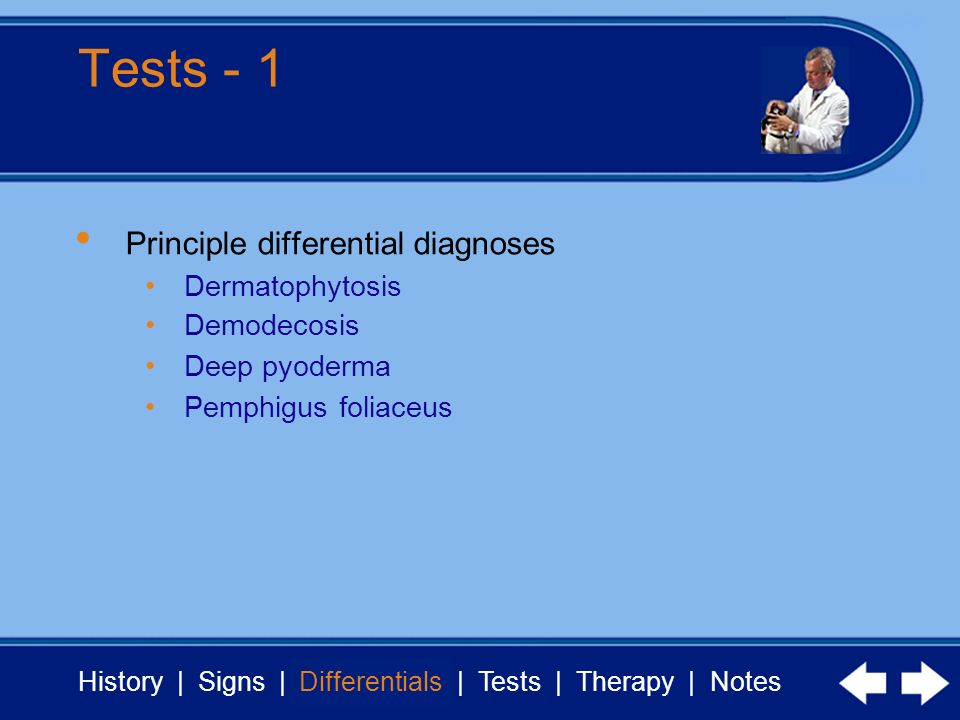 History | Signs | Differentials | Tests | Therapy | Notes Tests - 1 Differentials Principle differential diagnoses Dermatophytosis Demodecosis Deep pyoderma Pemphigus foliaceus