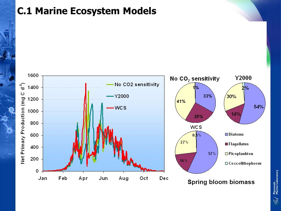 C.1 Marine Ecosystem Models We have recruited a modeller to work specifically on the TSEC project We have continued tuning the model parameterisation.