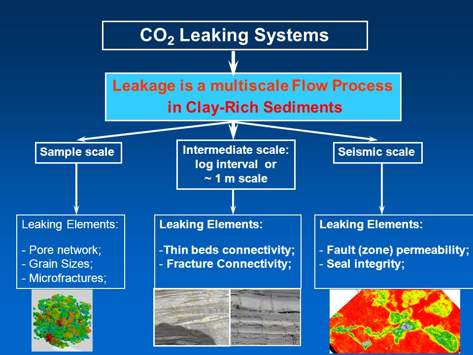 CO 2 Leaking Systems Leakage is a multiscale Flow Process in Clay-Rich Sediments Sample scale Intermediate scale: log interval or ~ 1 m scale Seismic scale Leaking Elements: - Pore network; - Grain Sizes; - Microfractures; Leaking Elements: -Thin beds connectivity; - Fracture Connectivity; Leaking Elements: - Fault (zone) permeability; - Seal integrity;