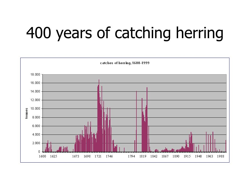 400 years of catching herring