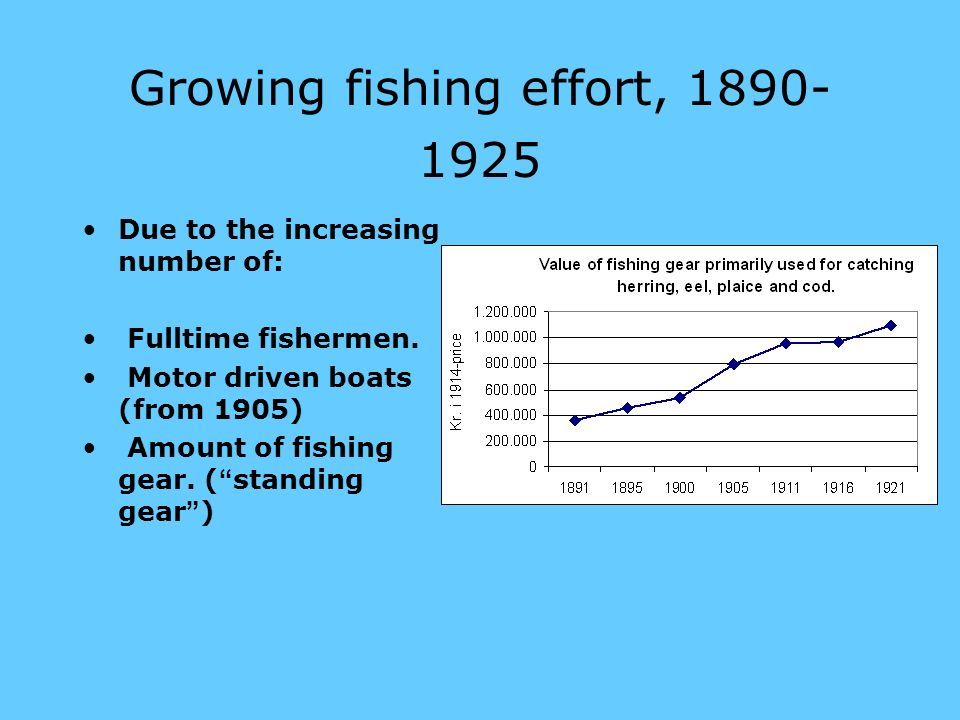 Growing fishing effort, 1890- 1925 Due to the increasing number of: Fulltime fishermen.