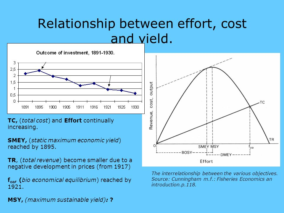 Relationship between effort, cost and yield. The interrelationship between the various objectives.