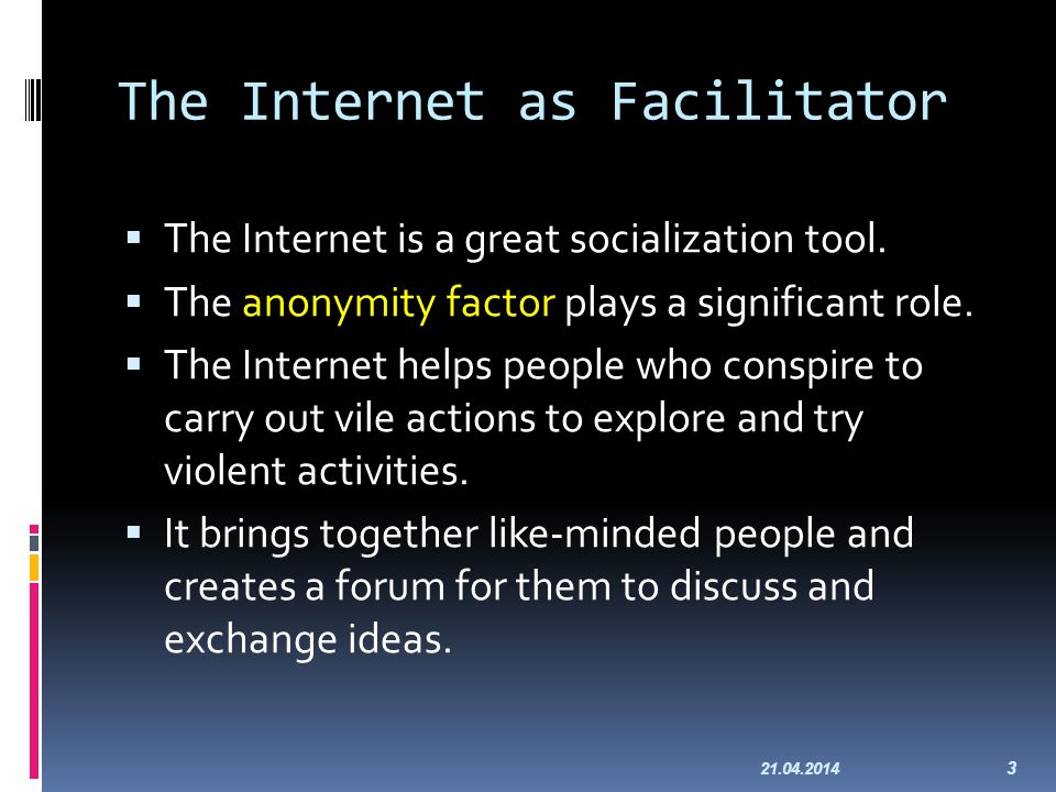 The Internet as Facilitator The Internet is a great socialization tool.