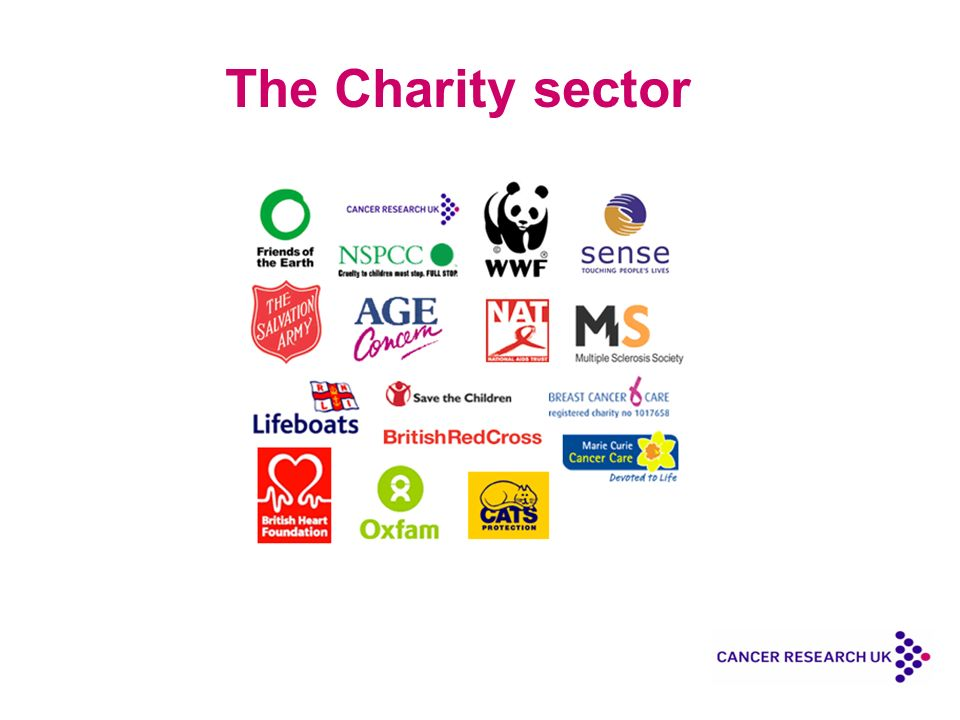 The Charity sector