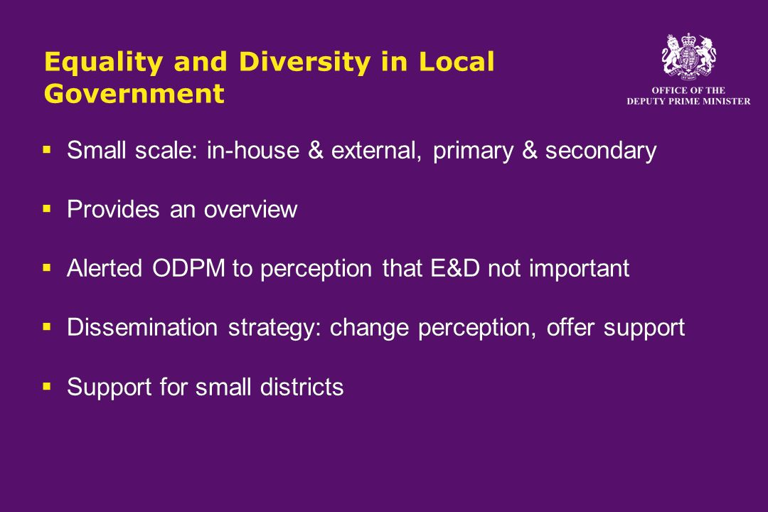 Equality and Diversity in Local Government Small scale: in-house & external, primary & secondary Provides an overview Alerted ODPM to perception that E&D not important Dissemination strategy: change perception, offer support Support for small districts